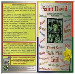 St David's Greeting Card